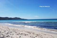 Maison d'hôte en Corse A Sulana la plage de Saleccia
