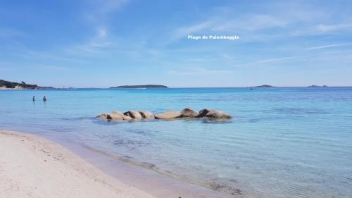 Maison d'hôte en Corse A Sulana la plage de Palombaggia