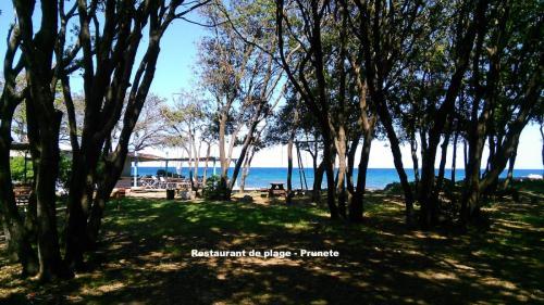 Maison d'hôte en Corse A Sulana paillote plage de Prunete